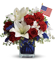 T163-2A America the Beautiful